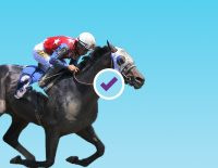 2021 Haskell Stakes Betting Picks