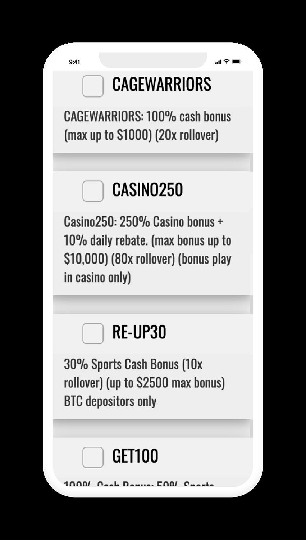 BetDSI Bonus Screen