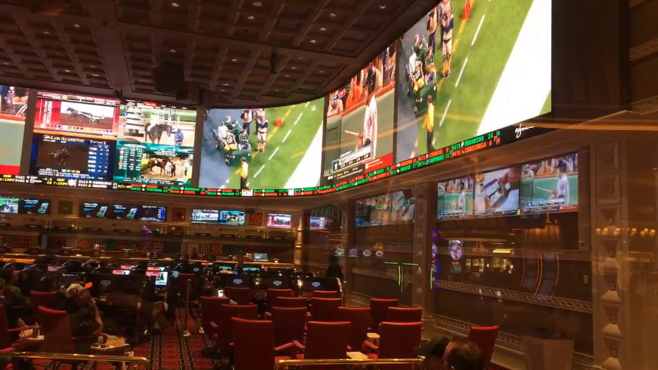 Ocean Resort Casino Sportsbook Money Line Super Bowl