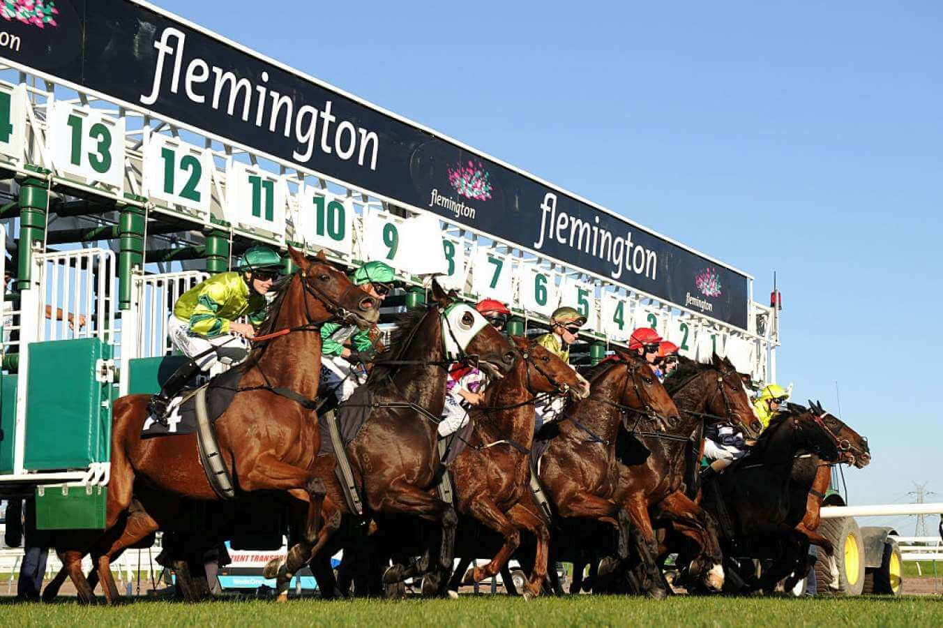 Melbourne Cup Odds