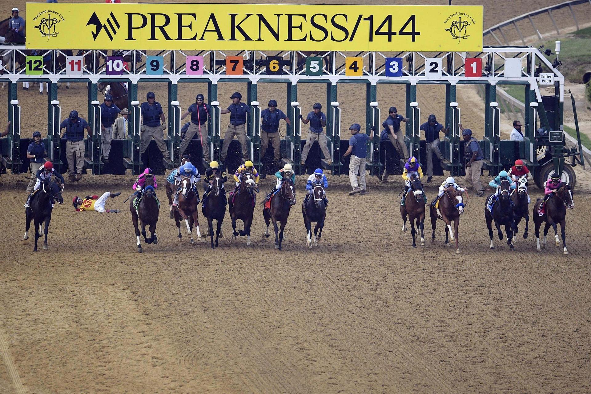 Preakness Betting Odds