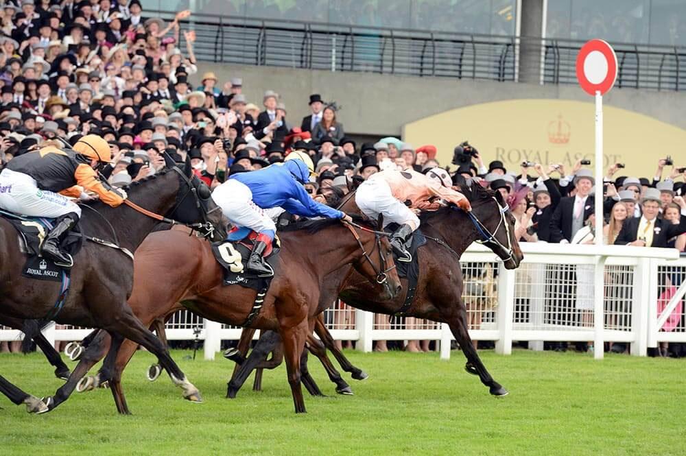 Royal Ascot Betting Odds