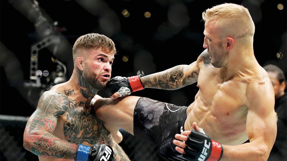 UFC Vegas Betting Odds
